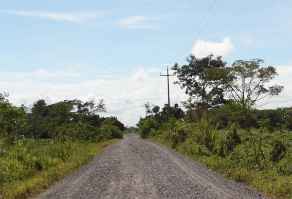 Sistema eléctrico rural 33/19kV usado en la zona selva de Perú. Derivación Codo del Pozuzo.